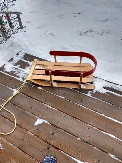Nikola's new sled